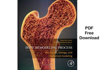 Bone Remodeling Process: Mechanics
